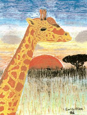 Animals in the Wild - Lesson Plan