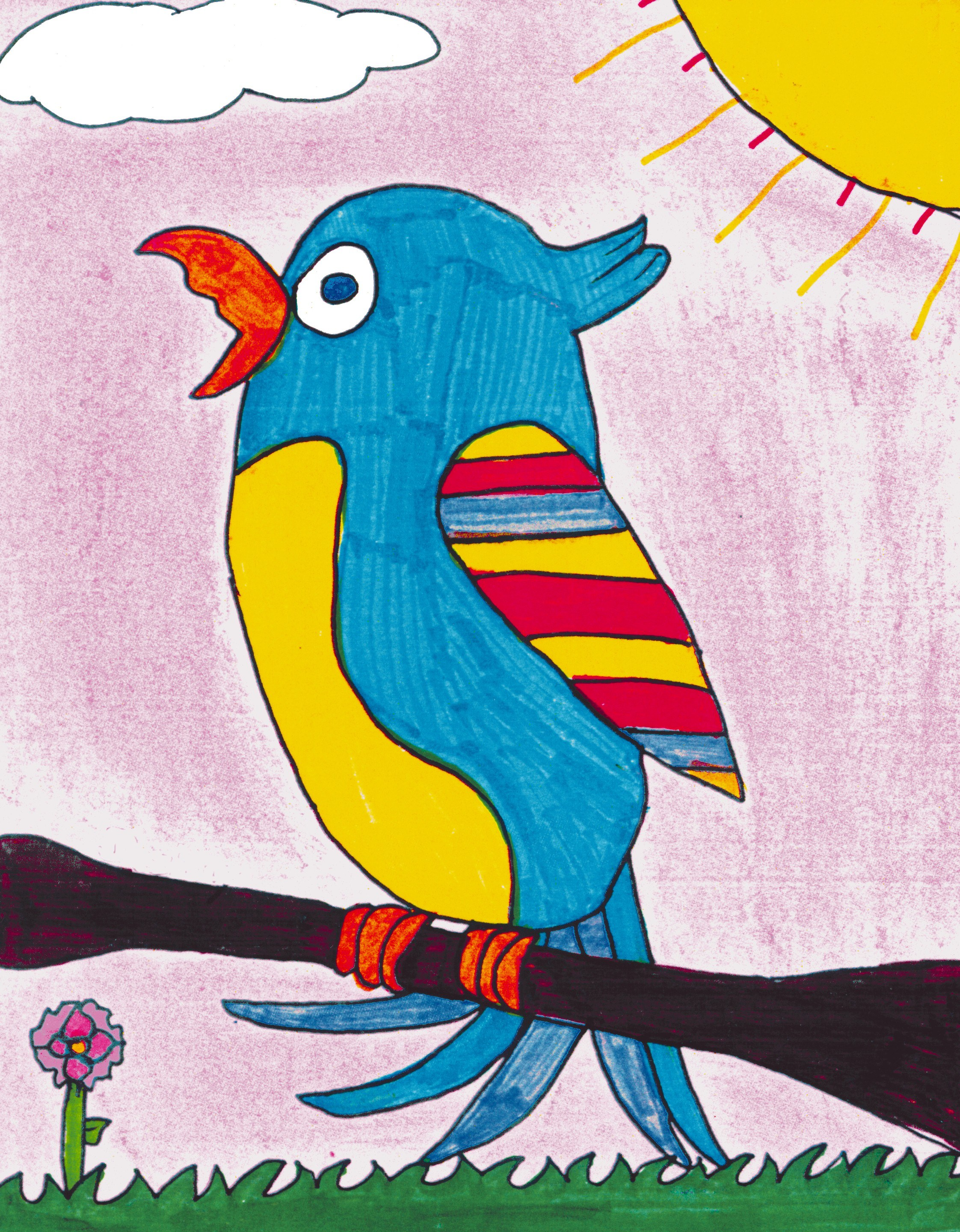 Tropical Feathered Friends - Lesson Plan